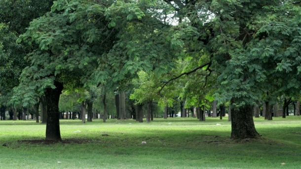 Gorgeous parks everywhere. In Rosario and beyond. Huge municipal investment