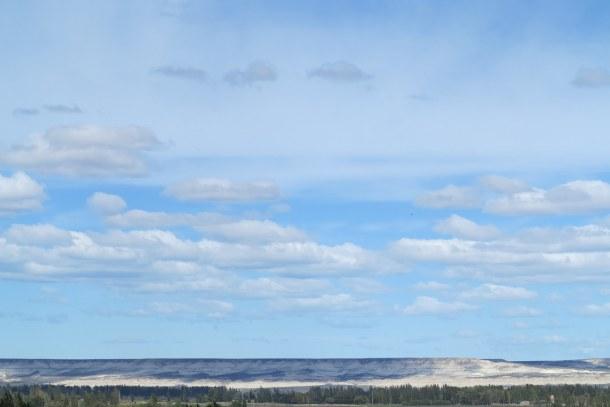 Trees, steppe, sky Gaiman Patagonia
