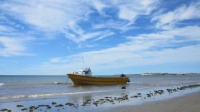 Perfect Puerto Madryn