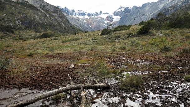 ushuaia valle de los lobos (11)