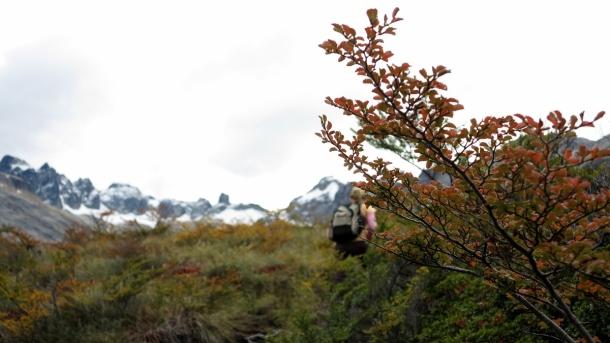 ushuaia valle de los lobos (13)