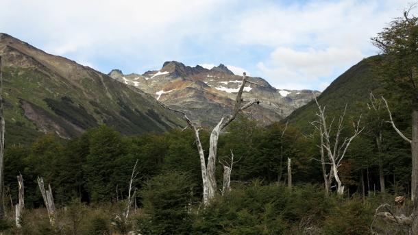 ushuaia valle de los lobos (6)