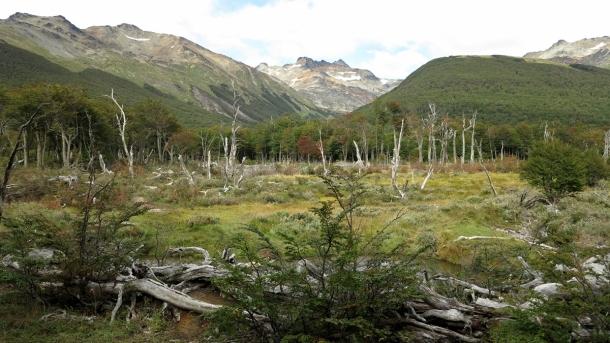 ushuaia valle de los lobos (9)