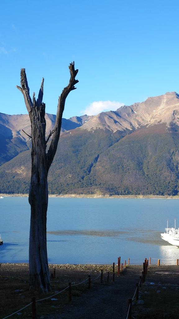 A milky blue glacier-fed lagoon, like the lagoon we saw down un Ushuaia