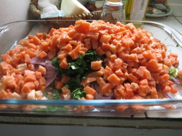 punta arenas salmon ceviche