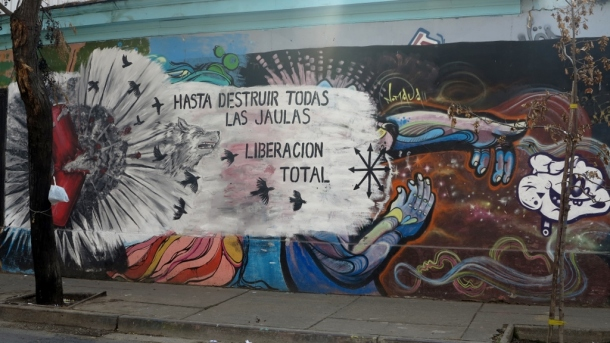 """To destroy all the cages -- total liberation"""
