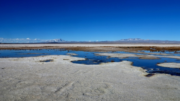 Cold water springs nearer to town, on the edge of the Salar