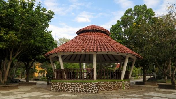 amazon pampas (1)